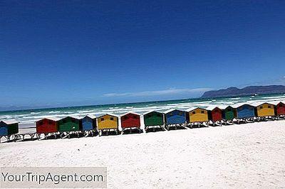15 De Las Mejores Playas De Sudáfrica