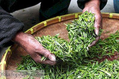 Ceaiuri de slăbit – funcționează?