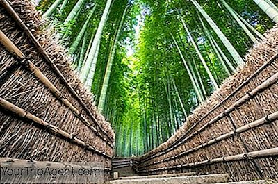 Brancher à Kyoto